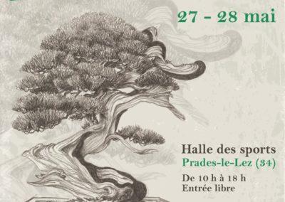 Montpellier 2017